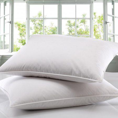 duck pillow pair new